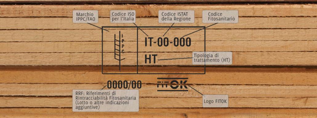 tratt-ht-1030x295